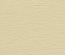 291-3470 Ultraleather – Shell – Schumacher Fabric
