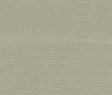 291-3729 Ultraleather – Driftwood – Schumacher Fabric