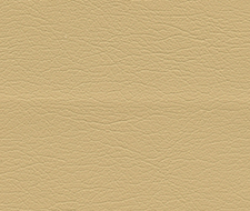 291-3851 Ultraleather – Chamois – Schumacher Fabric