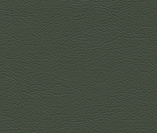 291-4352 Ultraleather – Loden – Schumacher Fabric