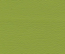 291-4460 Ultraleather – Parrot – Schumacher Fabric