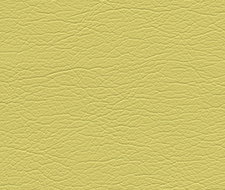 291-5255 Ultraleather – Bamboo – Schumacher Fabric
