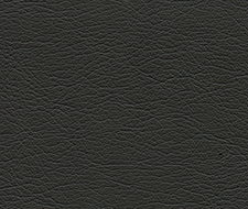 291-5607 Ultraleather – Raven – Schumacher Fabric