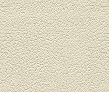 Schumacher Brisa Birch Fabric 303-3019