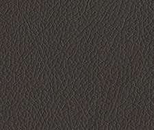 Schumacher Brisa Coffee Bean Fabric 303-3023