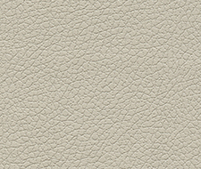 Schumacher Brisa Fog Fabric 303-3822