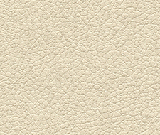 Schumacher Brisa Cream Fabric 303-3863