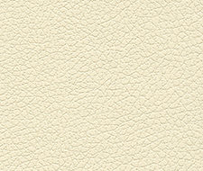 Schumacher Brisa French Vanilla Fabric 303-3866