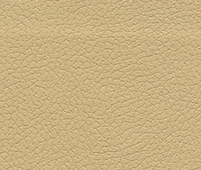Schumacher Brisa Golden Fabric 303-3867