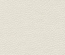 Schumacher Brisa White Fabric 303-5747