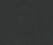 Schumacher Brisa Black Onyx Fabric 303-5749