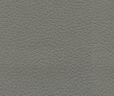 Schumacher Brisa Ash Fabric 303-5802