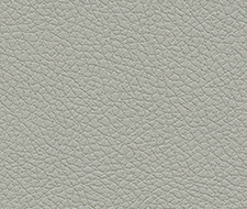 303-5820 Brisa – Quicksilver – Schumacher Fabric