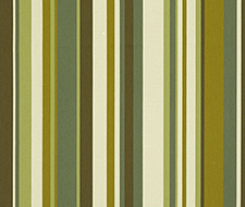 62894 Delray Stripe – Avocado – Schumacher Fabric